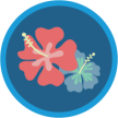 trailhead_module_salesforce_ohana_culture